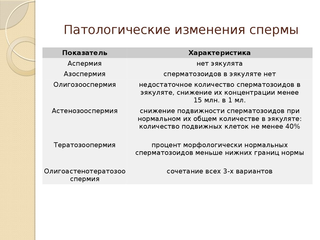 tak-vot-mi-trahaem-russkih