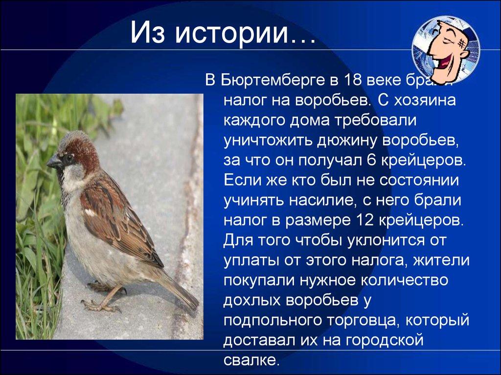 история рубля ppt
