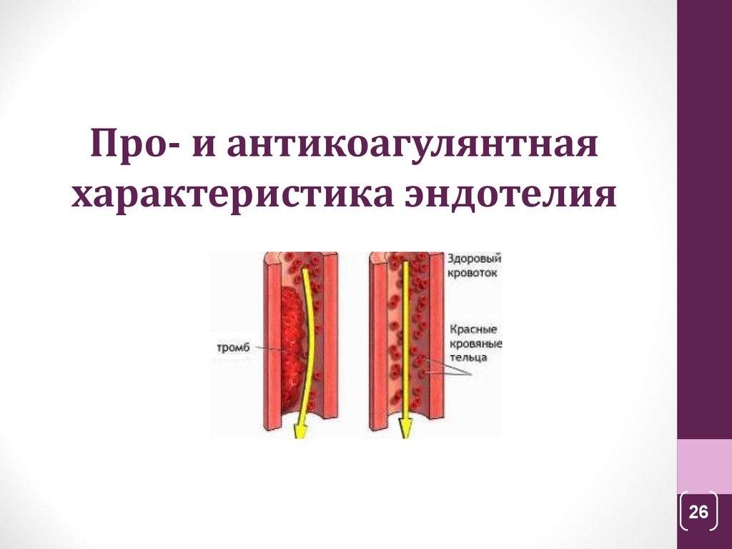 ингибитор активатора плазминогена 5g 4g