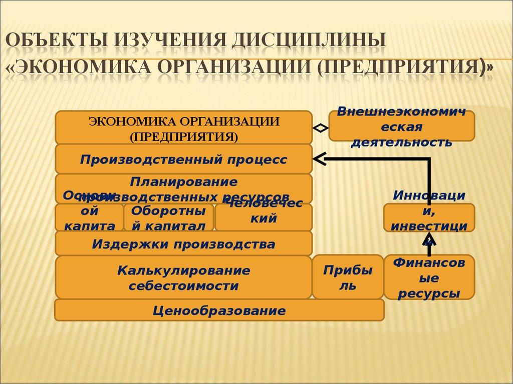 Основы Правовых Знаний Программа Курса