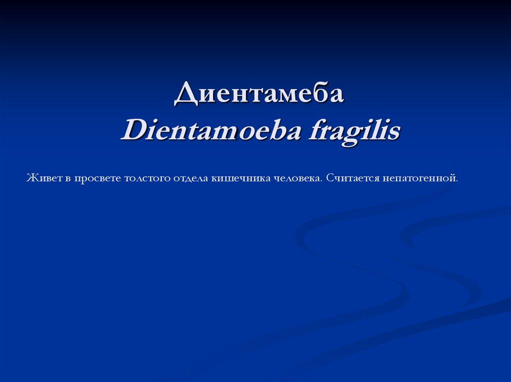 Антибиотик Линкомицина гидрохлорид инструкция по
