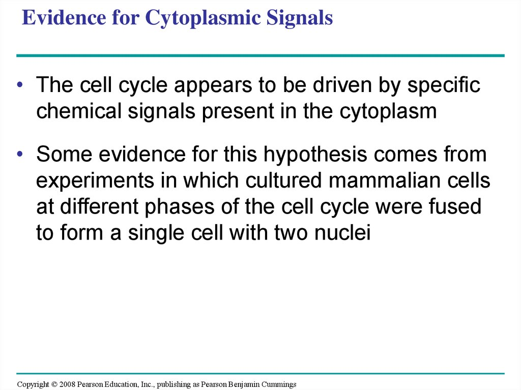 Evidence for Cytoplasmic Signals