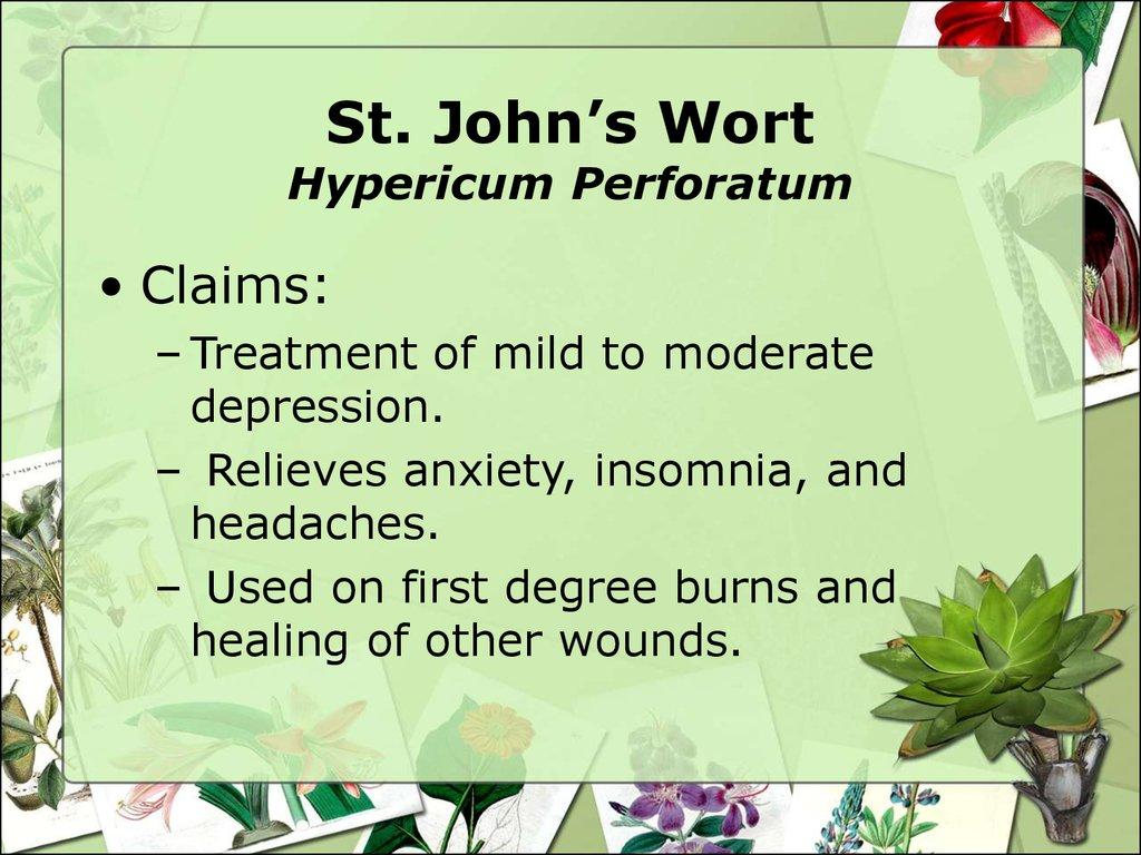 Nature S Way St John S Wort Dosage Depression