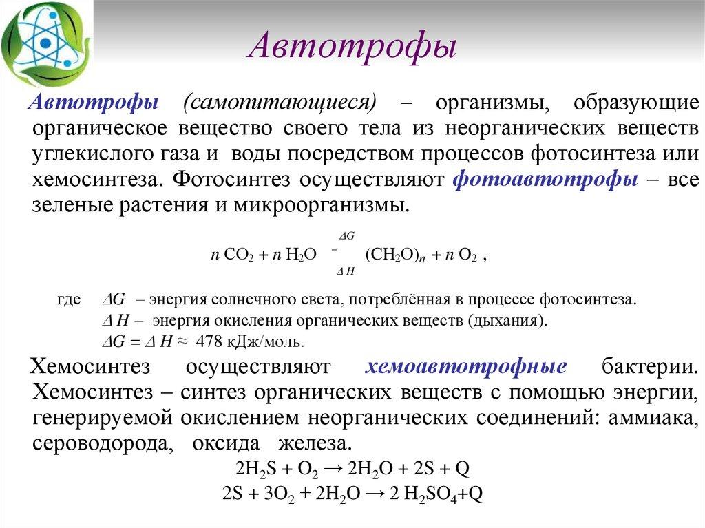 Трофическая структура экосистем автротрофы гетеротрофы и сапротрофы трофические уровни примеры