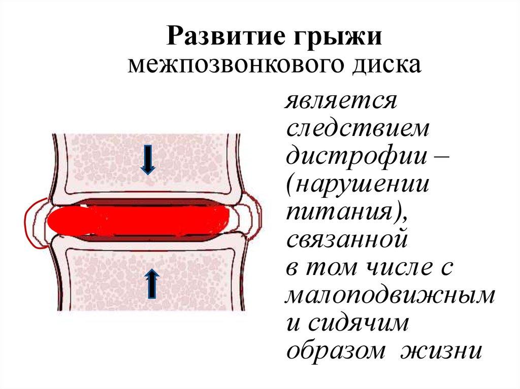 арго средство от паразитов