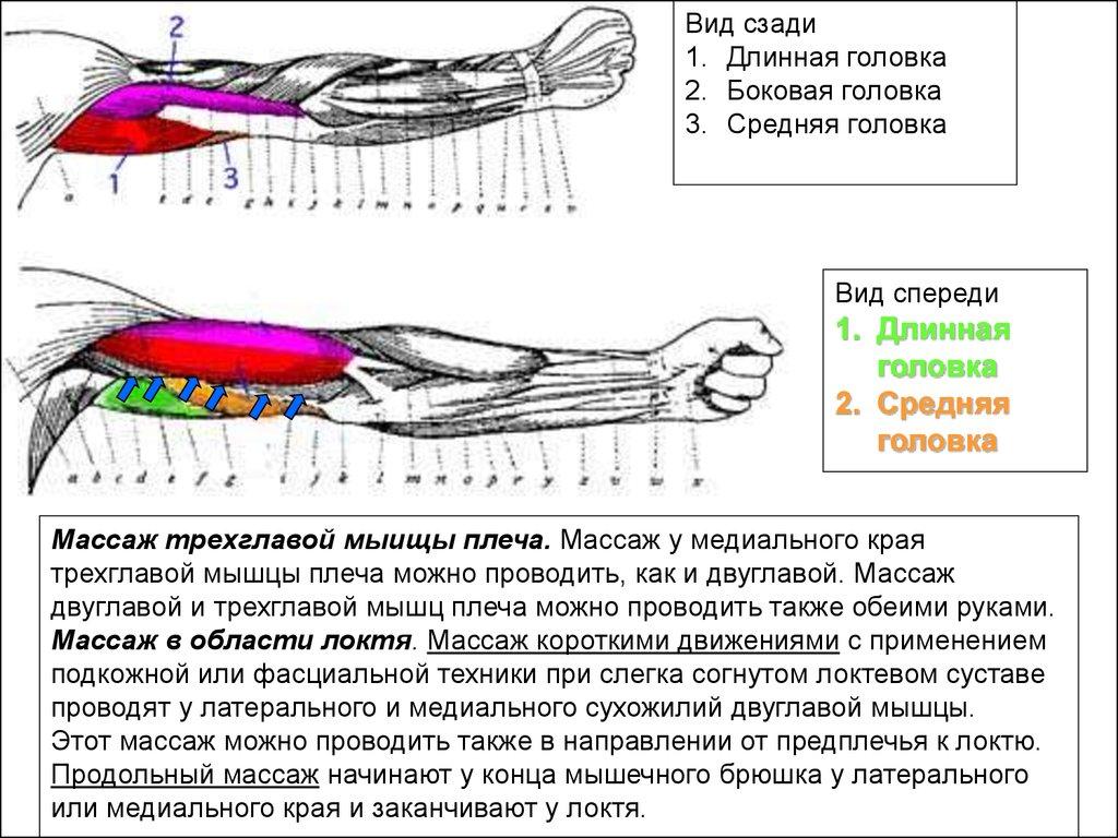 Техника генитального массажа, порно с бритой киской