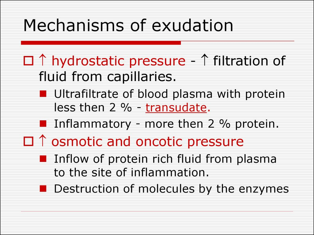 Mechanisms of exudation