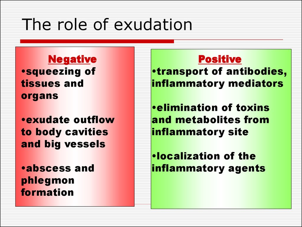 The role of exudation