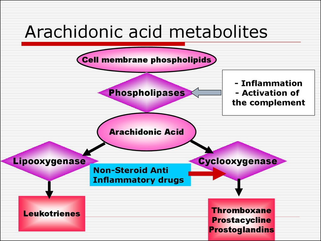 Arachidonic acid metabolites