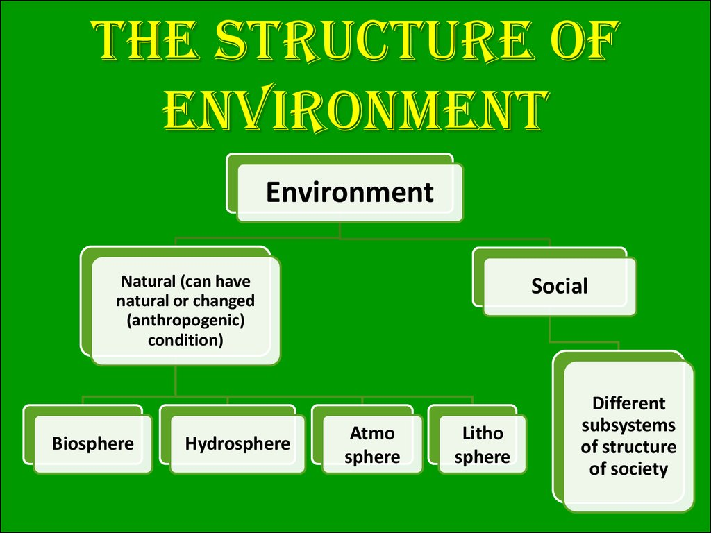 The structure of environment