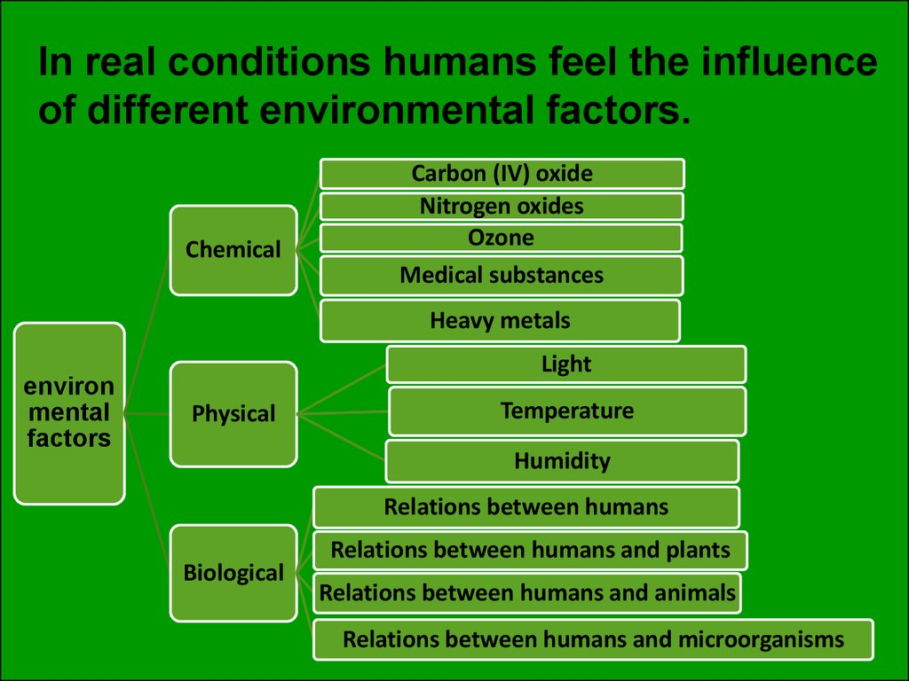 In real conditions humans feel the influence of different environmental factors.
