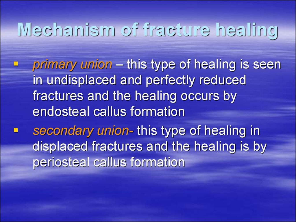 Mechanism of fracture healing