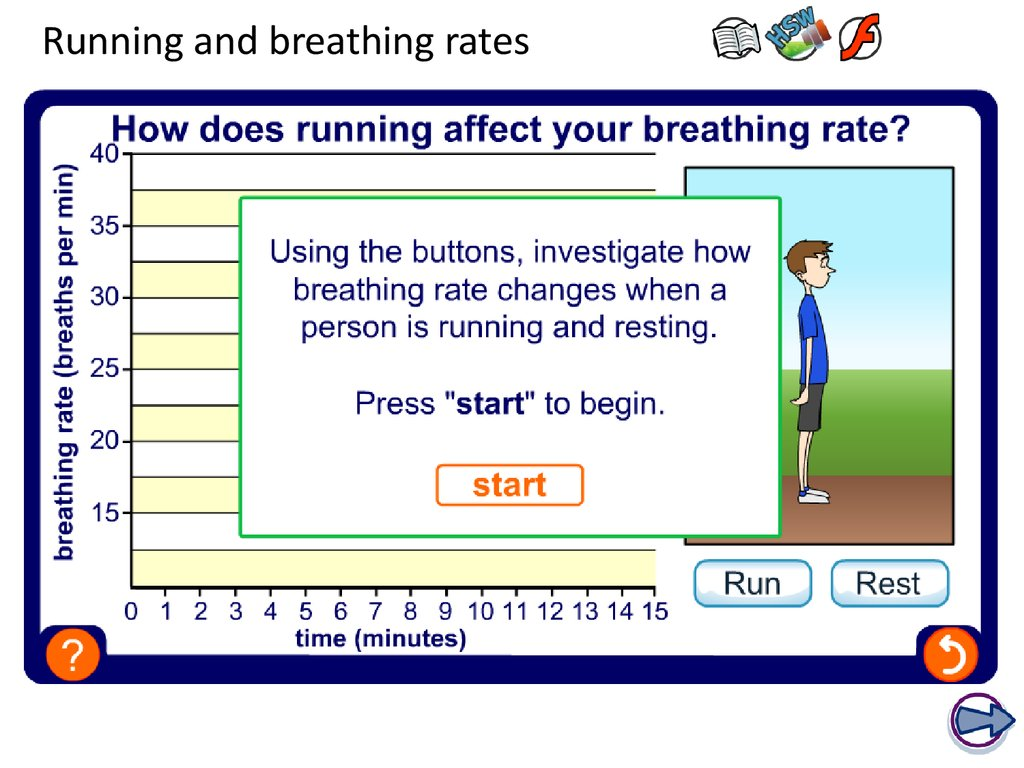 Running and breathing rates