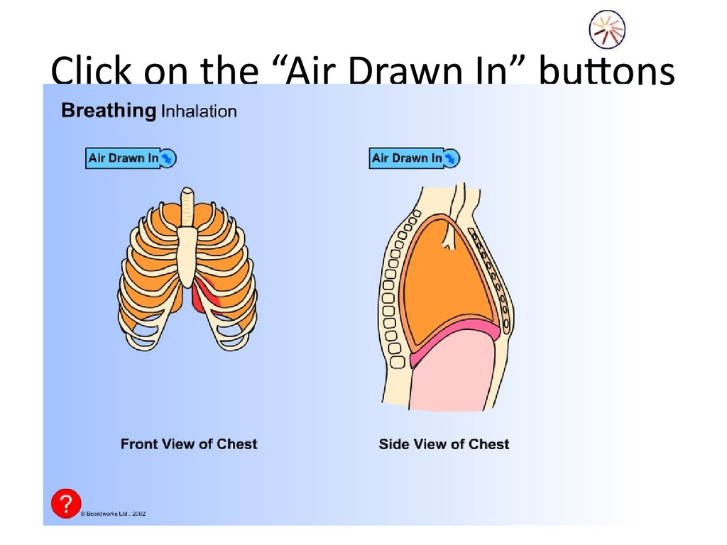"Click on the ""Air Drawn In"" buttons"