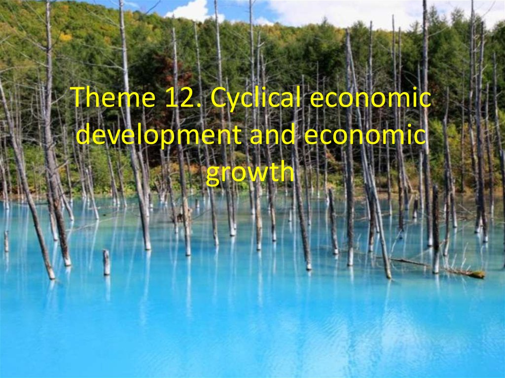 Theme 12. Cyclical economic development and economic growth