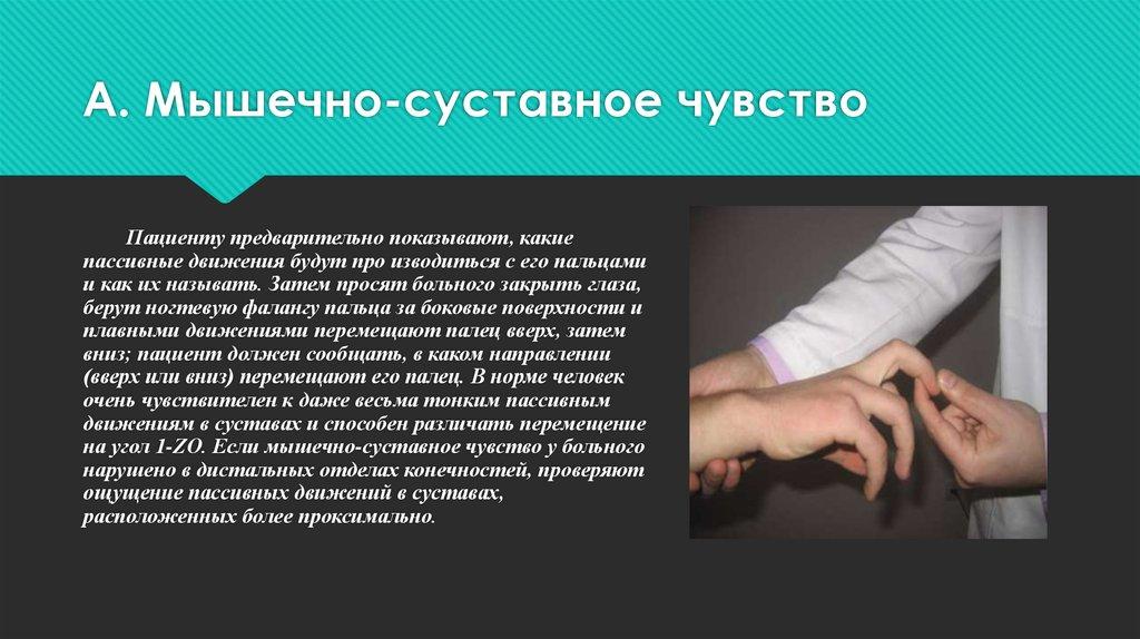 Мышечно суставный анализатор препараты для лечения заболеваний суставов у собак