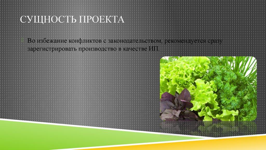 Biotechnology business plan sample a sample biotech company business plan template wajeb Images