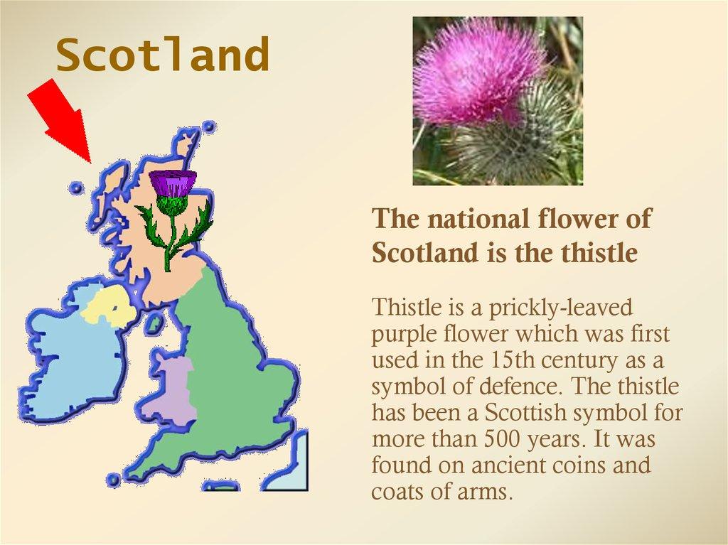 British Symbols Online Presentation
