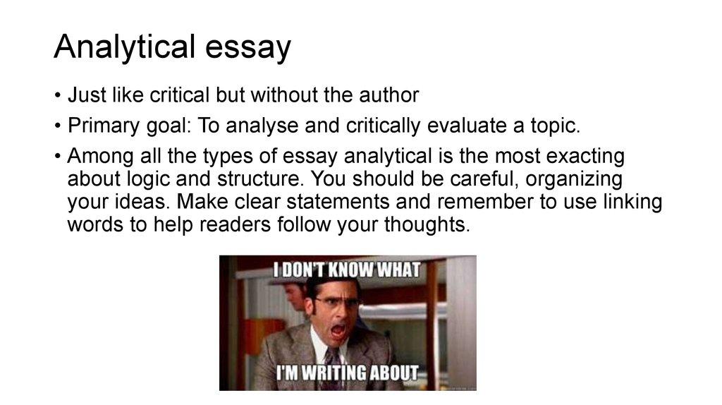 anylitical essay