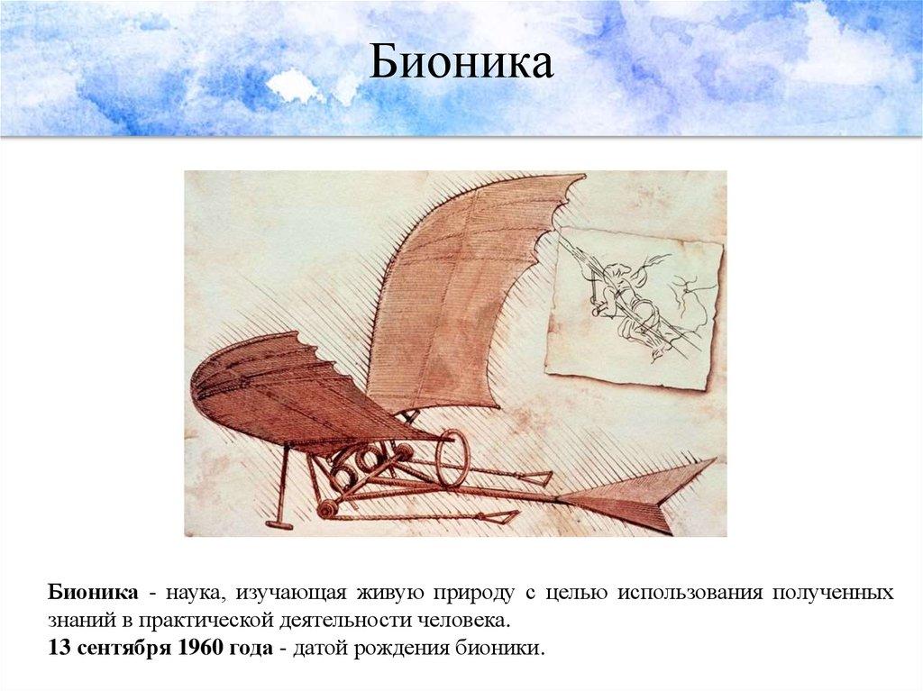 русский бионика примеры картинки в картинках найдет