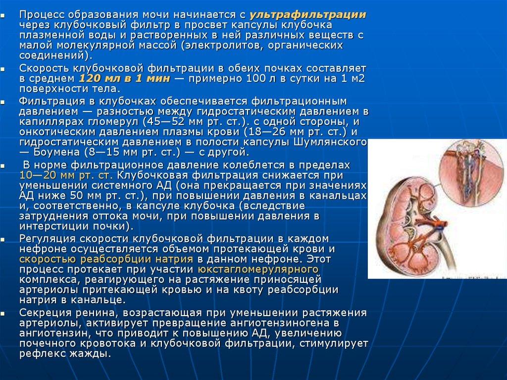 Изостенурия: важнейший симптом нарушения функции почек 265
