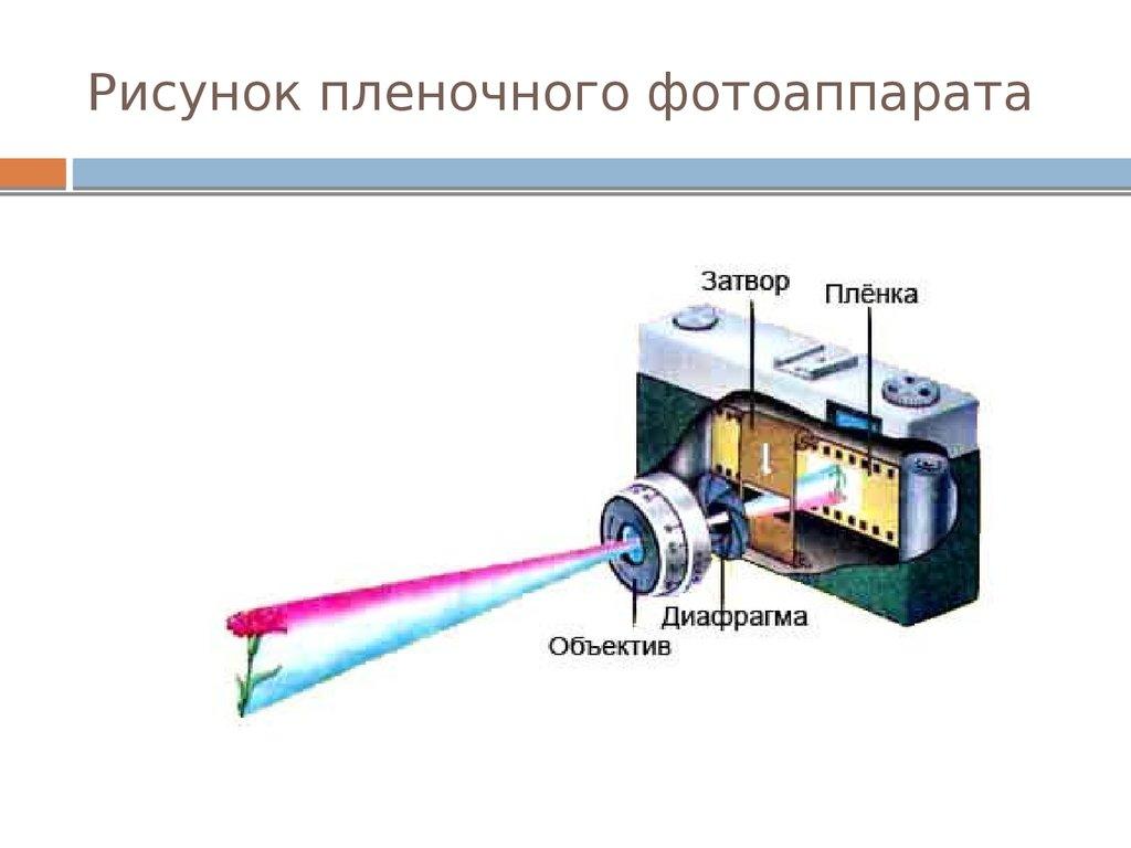 Устройство фотоаппарата картинка