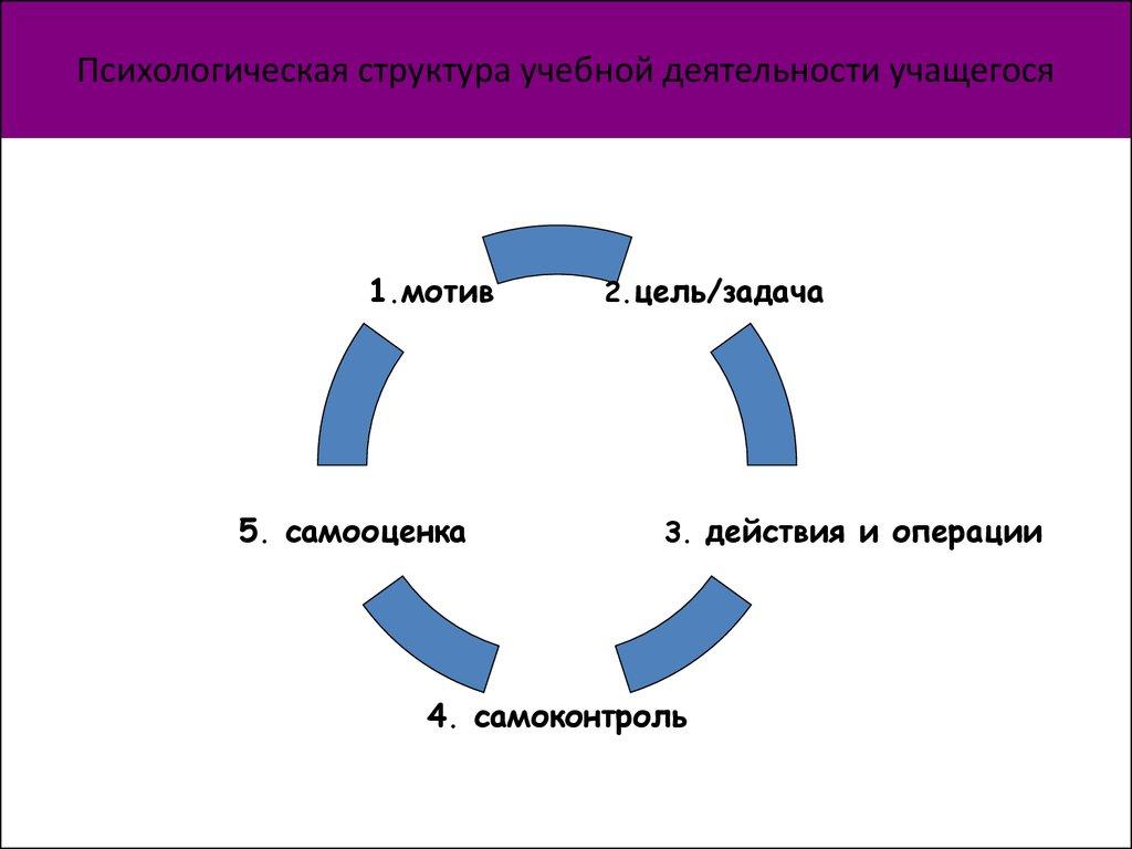 Психика и деятельность структура деятельности