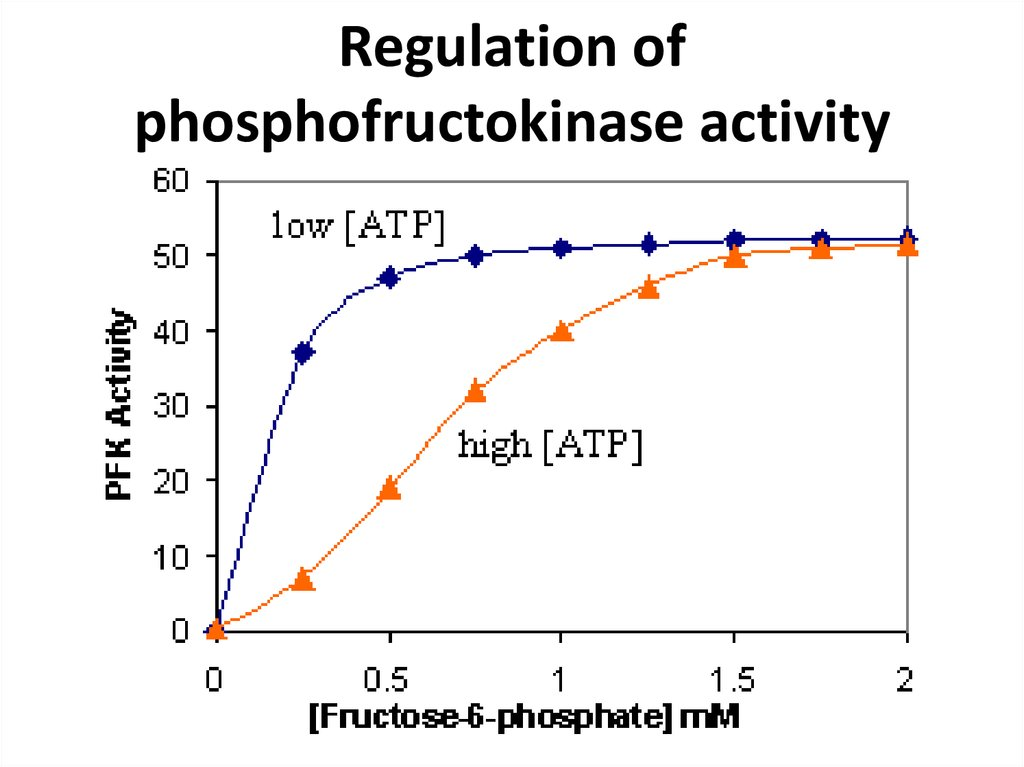 Regulation of phosphofructokinase activity