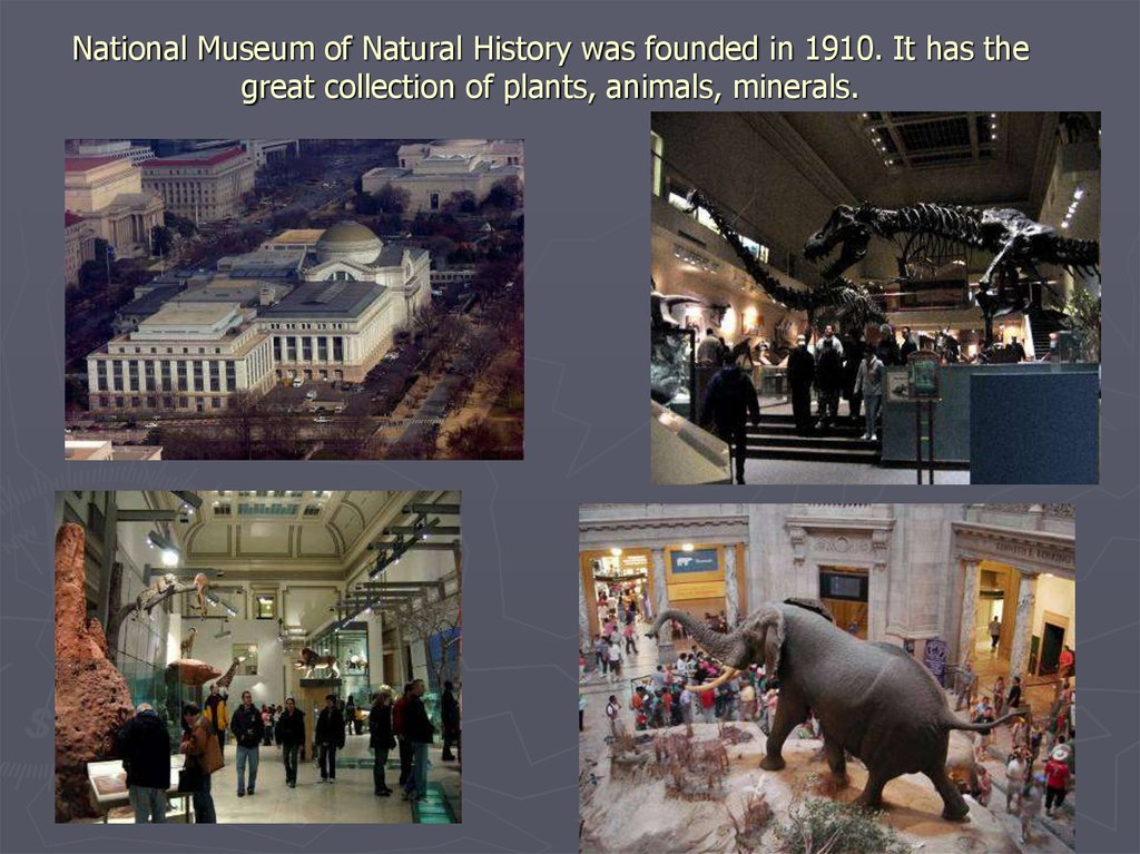 National Museum of Natural History was founded in 1910. It has the great collection of plants, animals, minerals.
