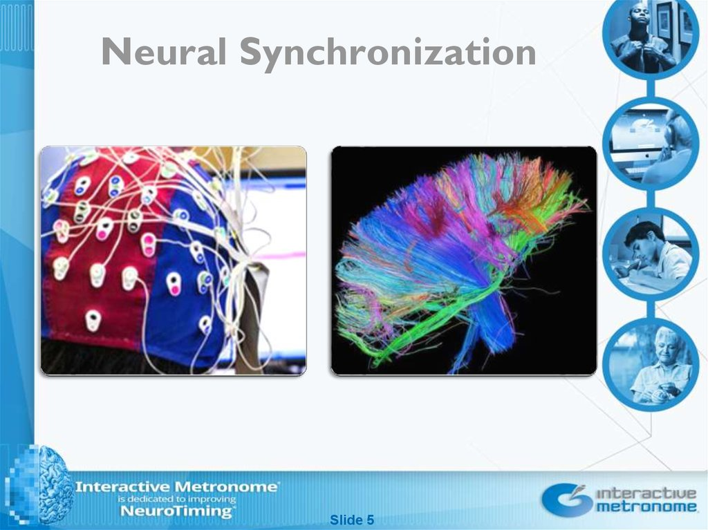 Neural Synchronization
