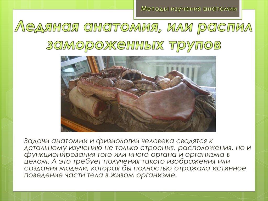 николай пирогов сироение тела замороженные Москве: