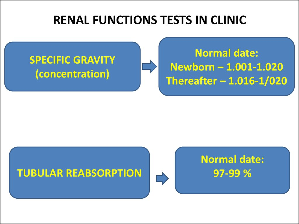 RENAL FUNCTIONS TESTS IN CLINIC