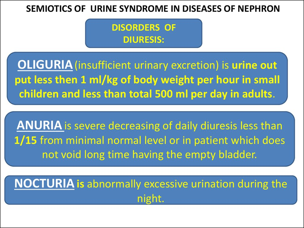 SEMIOTICS OF URINE SYNDROME IN DISEASES OF NEPHRON