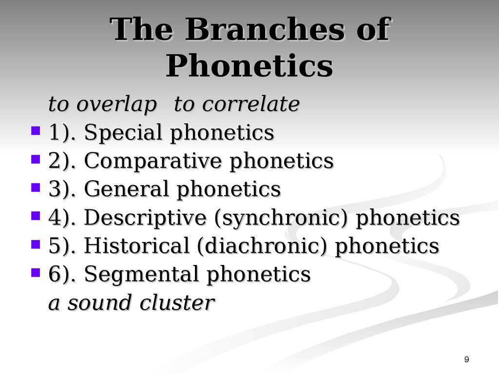 The Branches of Phonetics