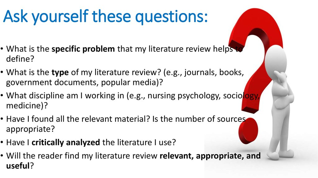 literature review types