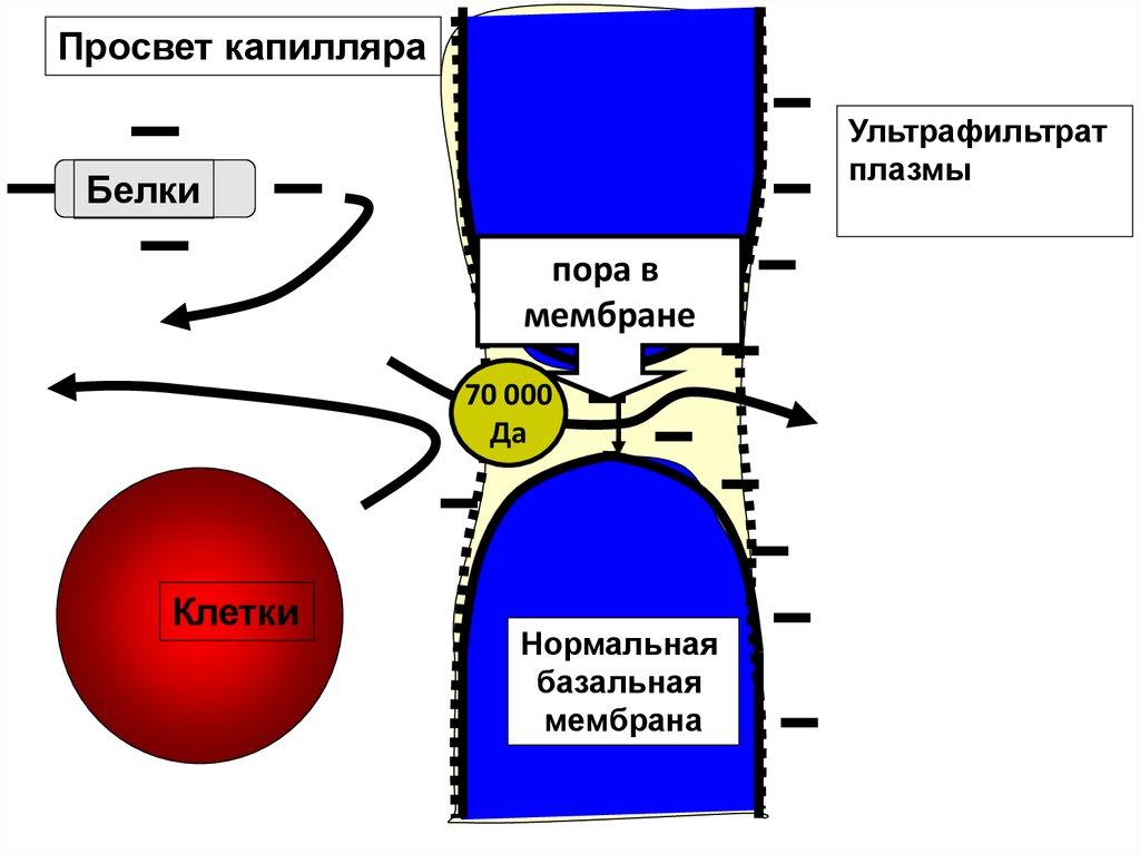 online Röntgenfluoreszenzanalyse mit Radionuklidquellen