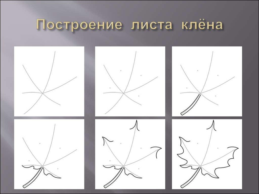 Схемы в картинках клен