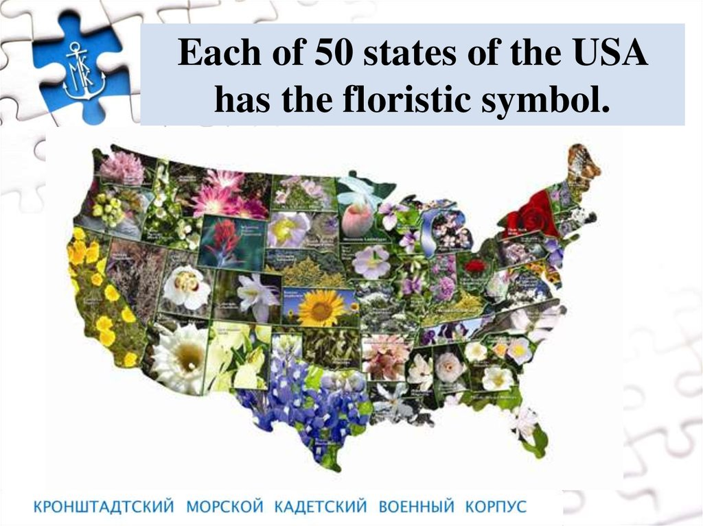 Floristic Symbols Of The English Speaking
