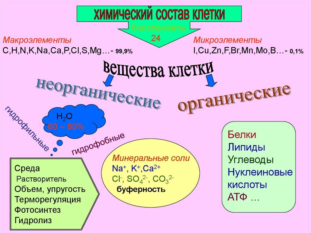 химический состав рыбы таблица