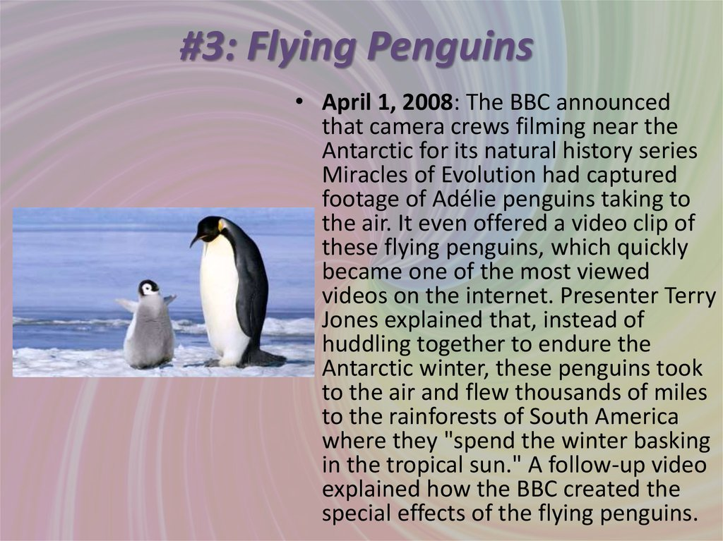 #3: Flying Penguins
