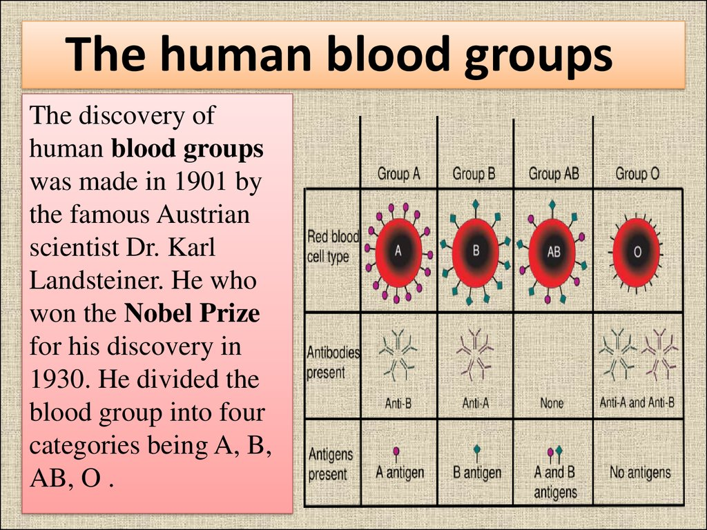 Тhe human blood groups