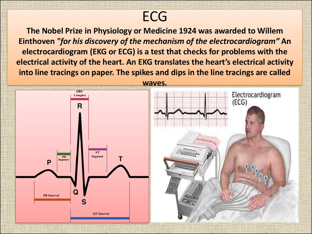 "ECG The Nobel Prize in Physiology or Medicine 1924 was awarded to Willem Einthoven ""for his discovery of the mechanism of the electrocardiogram"" An electrocardiogram (EKG or ECG) is a test that checks for problems with the electrical activity of the hea"