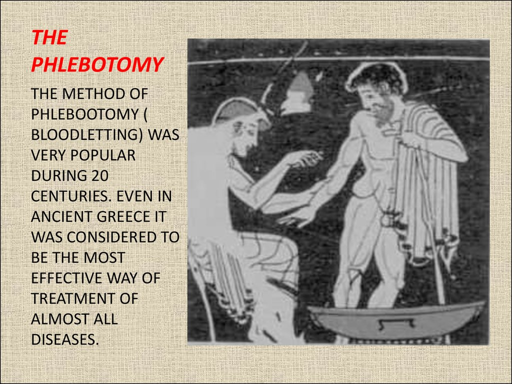 THE PHLEBOTOMY