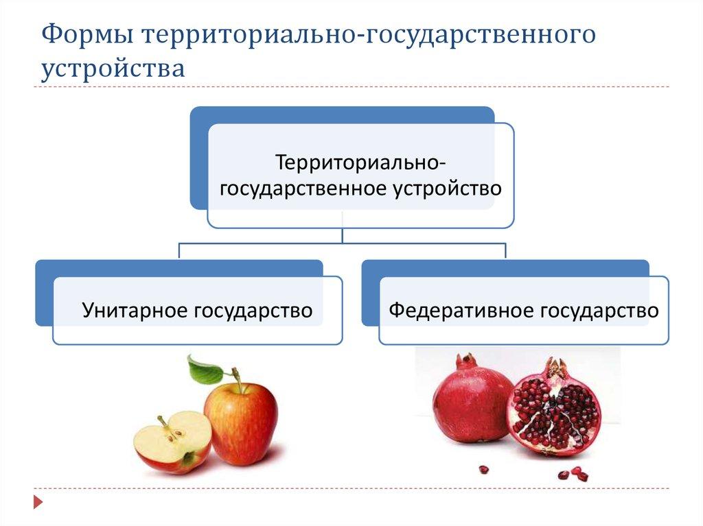 форма государственного устройства картинки для презентации сразу отметить