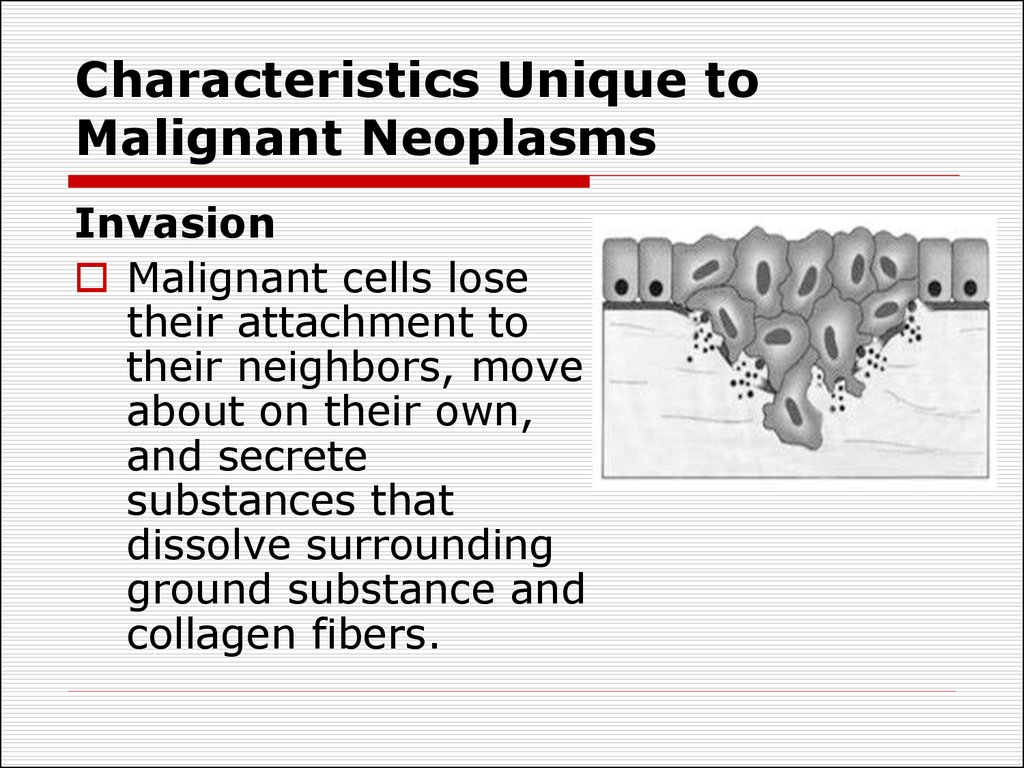 Characteristics Unique to Malignant Neoplasms