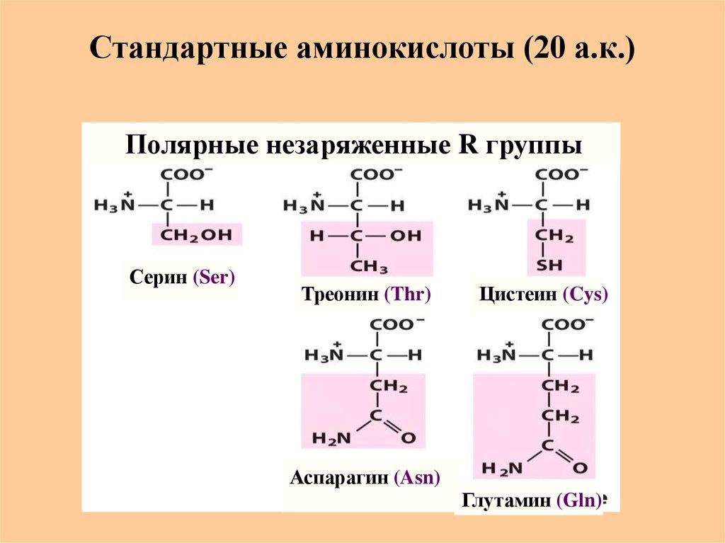 Шелка аминокислоты пептиды туринабол курсы цена
