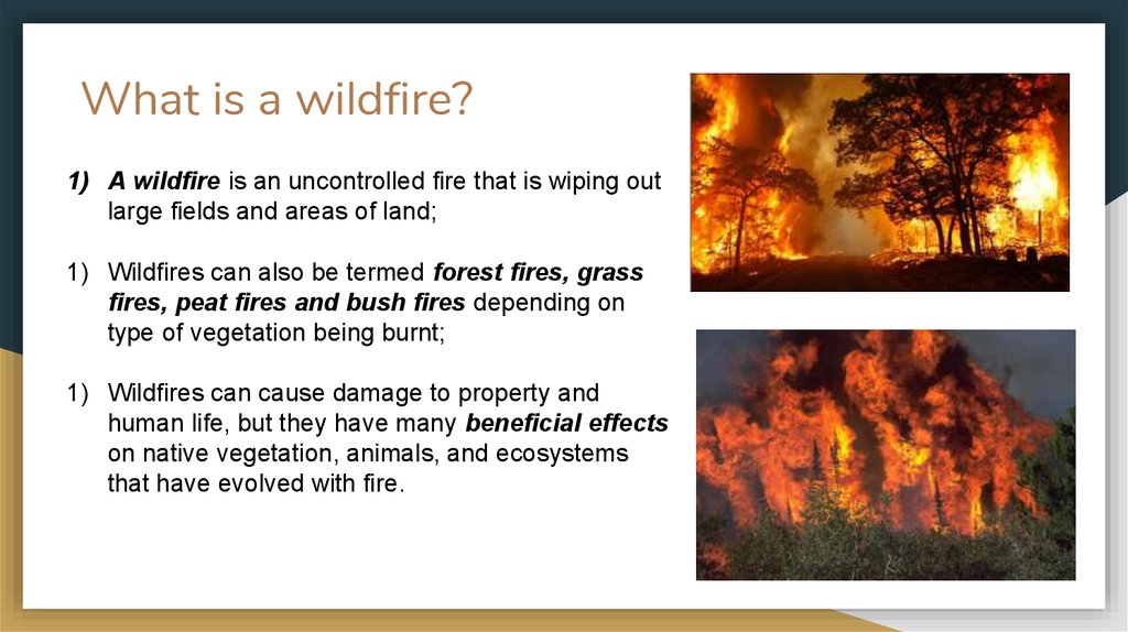 Introduction To Wildfires Online Presentation