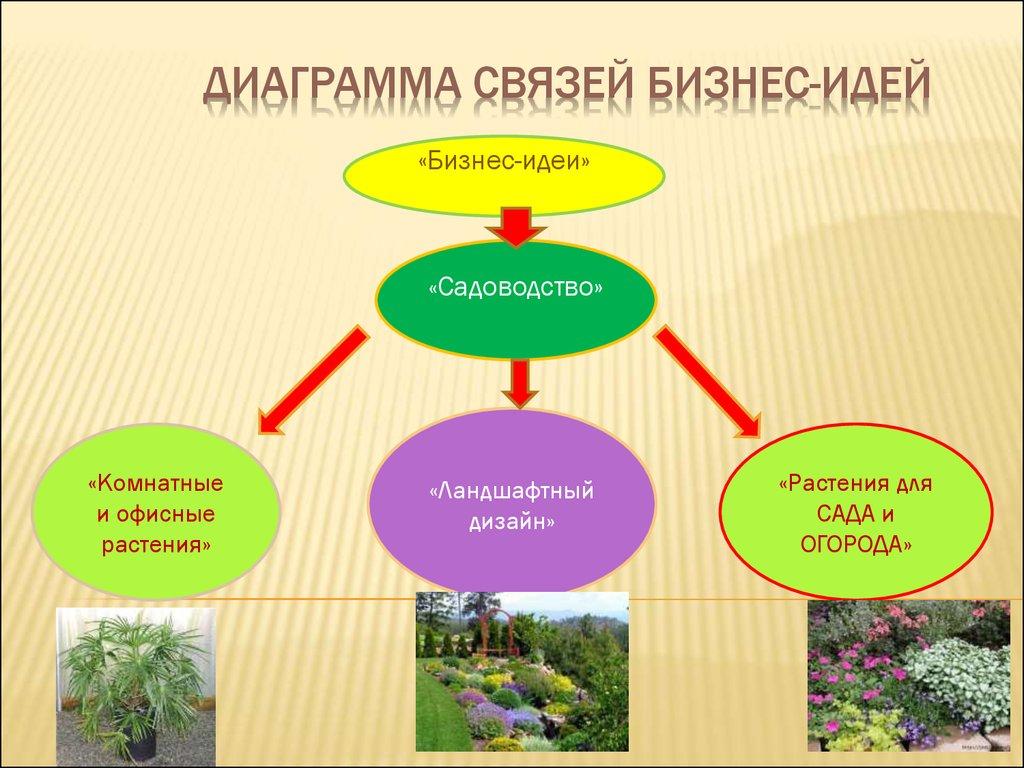Садоводство бизнес идеи бизнес план выращивания петуний