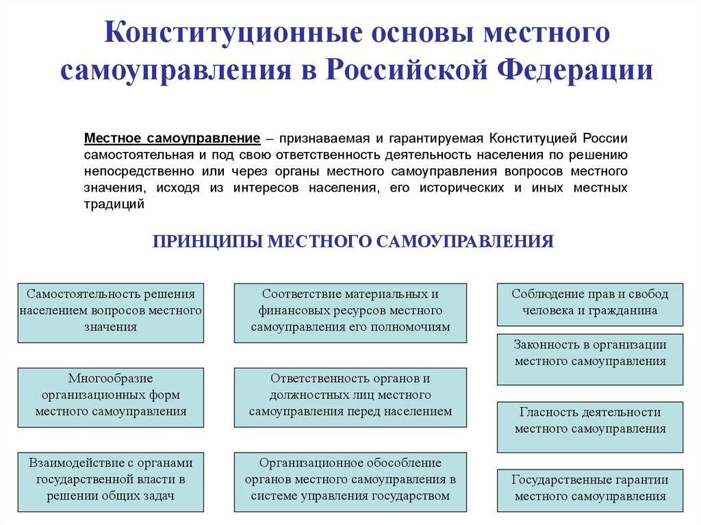 Шпаргалка многообразие организационных форм осуществления местного самоуправления
