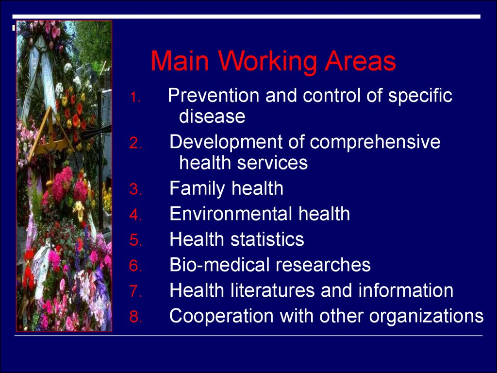World Health Organization (WHO) - online presentation